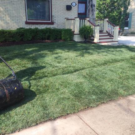 Sod Installation serving london, sarnia, grand bend, st thomas, strathroy and everywhere in between